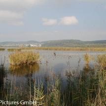 auf dem Damm zur Insel Reichenau