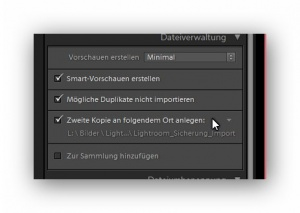 Lightroom, Import, Zweitkopie, lightroom-import-workflow